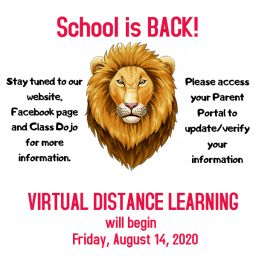 Virtual Distance Learning